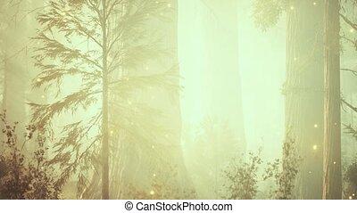 magique, forêt, fantasme, lumières, luciole