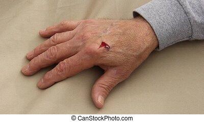 main bandée