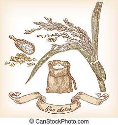 main, boulangerie, sac, grain, riz, dessiné, sketch., illustration