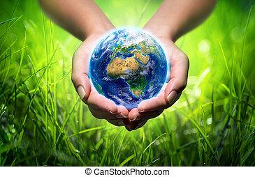mains, la terre, fond, herbe, -