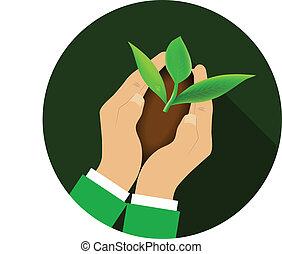mains, plant., tenue, jeune