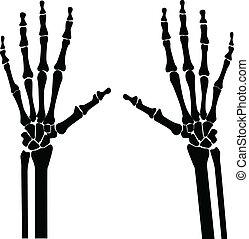 mains, rayon x