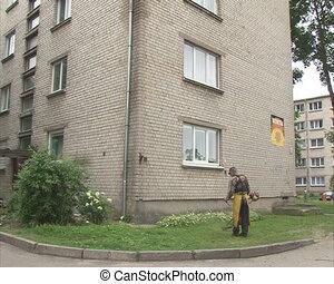 maison, coupure, ouvrier, herbe