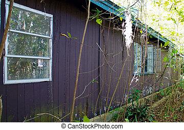 maison, floride, abandonnés