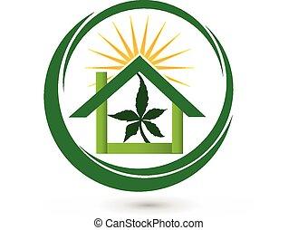 maison, logo, feuille, magasin, cannabis