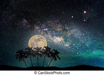 manière, arbre, laiteux, nasa), nuit, paysage, image, silhouette, ceci, lune, meublé, plam, noix coco, photographie., long, mountain., (elements, exposition, ciel, galaxy.