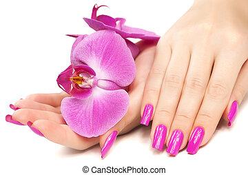 manucure, isolé, flower., orchidée
