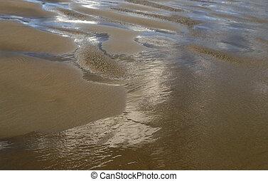 marée, paysage, plage, reflux