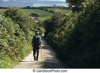 marche, angleterre, ruelle pays, bas, homme