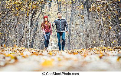 marche, coloré, couple, chien, jeune, automne, leur, forêt