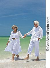 marche, couple, exotique, tenant mains, personne agee, plage, heureux