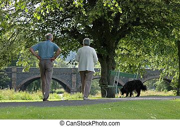 marche, couple, soleil, chien, personnes agées, leur