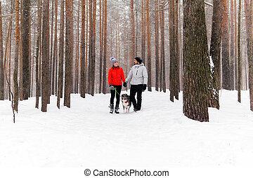 marche couples, hiver, forêt, jeune, chien