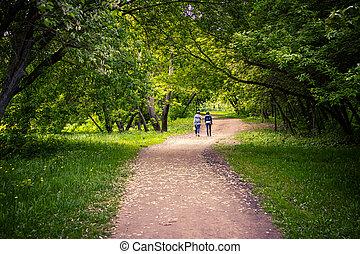 marche, extérieur, printemps, parc, deux, jeune, time., scénique, femmes