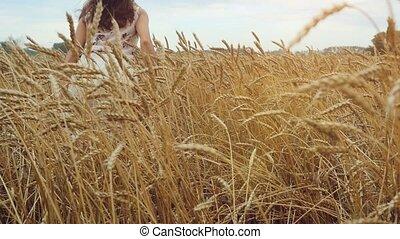 marche, femme, blé, maïs, oreilles, jeune, main, courant, champ, slowmotion., toucher, field., coucher soleil, girl, hd, 1920x1080, heureux