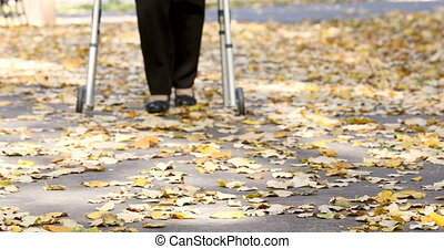 marche, femme, parc, automne, marcheur, personne agee, jambes