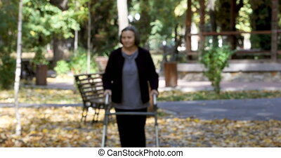 marche, femme, parc, automne, marcheur, personne agee