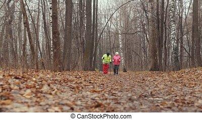 marche, femme, parc, deux, personnes agées, automne, nordique, avoir