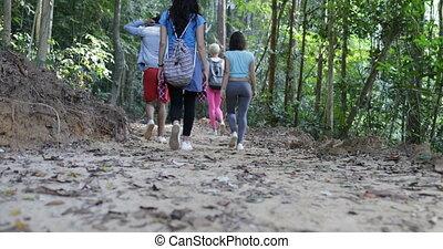 marche, groupe, gens, randonnée, arbres, vacances, ensemble, dos, par, aventure, trekking, pendant, sentier, vue, touristes, arrière, forêt