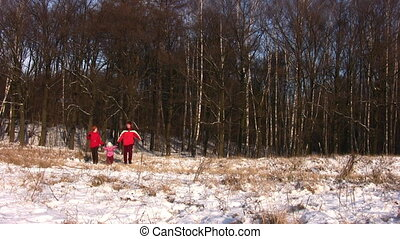 marche, hiver, famille, parc, petite fille