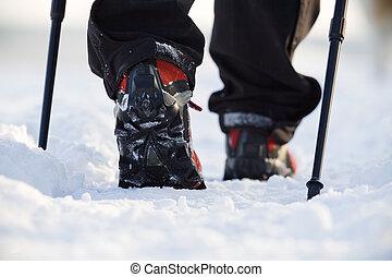marche, hiver, nordique