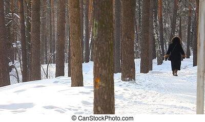 marche., hiver