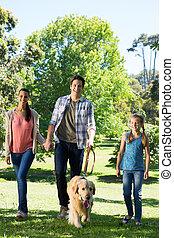 marche, parc, leur, chien famille, heureux