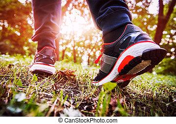 marche, printemps, croix, piste, forêt, pays, homme