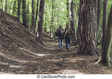 marche, randonnée, loin, deux, trail., forêt, appareil-photo., femmes