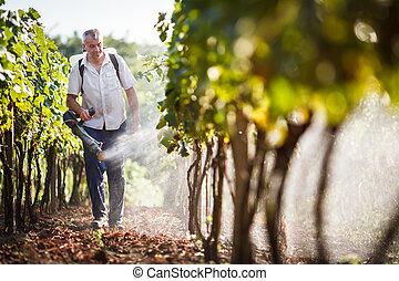 marche, sien, viticulteur, vignes, vignoble, pulvérisation, produits chimiques