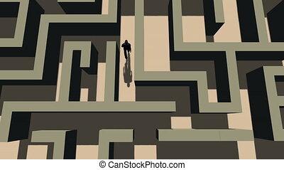 marche, sommet, par, labyrinthe, vue, homme