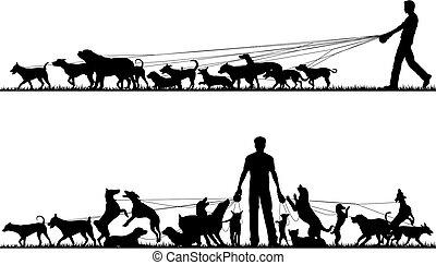 marcheur, chien