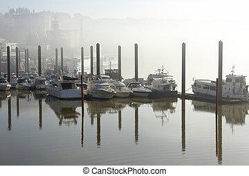 marina, brume, matin