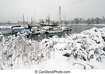 marina, couvert, buisson, neige