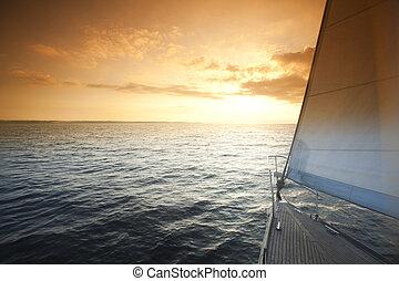 marine, thème, saturé, été, coloré