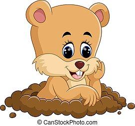 marmotte amérique, dessin animé, mignon