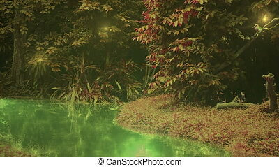 martin-pêcheur, enchanté, forêt