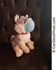 masque, chien, jouet, protection, covid-19, coronavirus, enfant