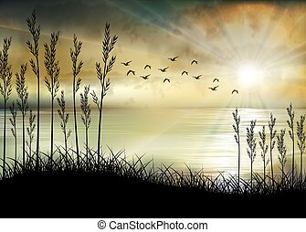 matin, levers de soleil, plage, illustration