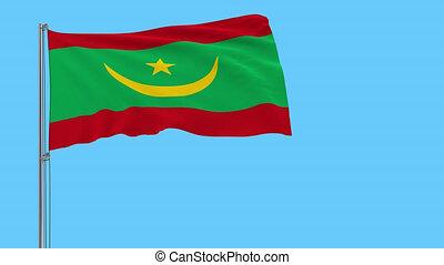 mauritanie, métrage, battement des gouvernes, isoler, transparency., prores, drapeau, 4k, mât, alpha