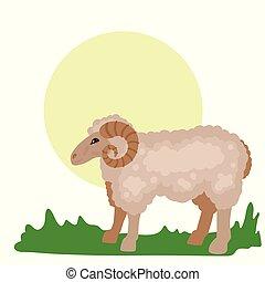 meadow., frôlé, print., animal, vecteur, mouton, illustration