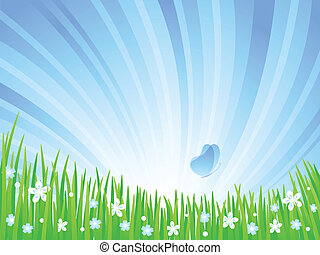 meadow., printemps