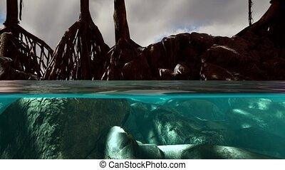 mer, au-dessus, arbres, surface, au-dessous, mangrove