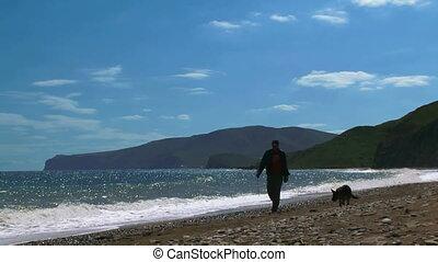 mer, homme, sien, chien, promenades