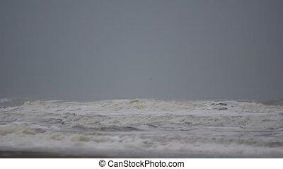 mer, plage, nuageux, ressac, nord, jour