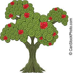 merveille, arbre