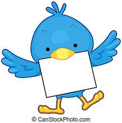 message, oiseau