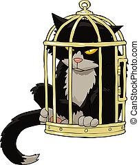 mettez cage oiseau, chat