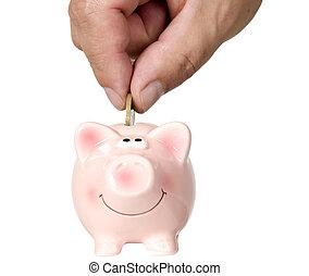 mettre, homme argent, économie, cochon