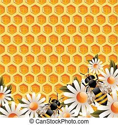 miel, floral, fond